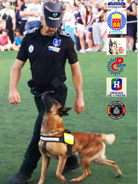 Exhibición canina pedrezuela 1/10/2021